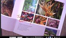 document camera-tool voor interactief touchscreen