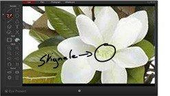 logiciel-interactif-pour-visualiseur
