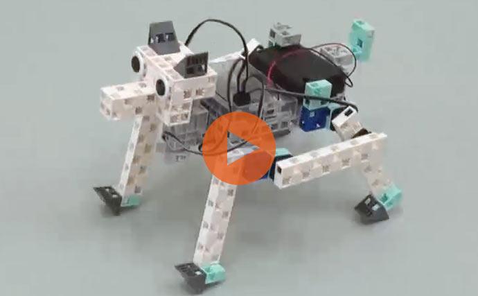 education-national-robot-scratch