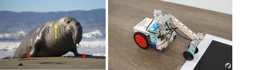 programmer un bras robotique pour marcher