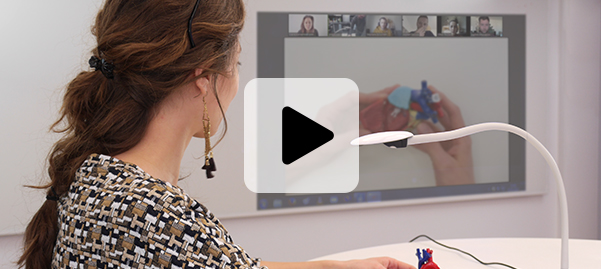 visualiseurs cours et travail à distance